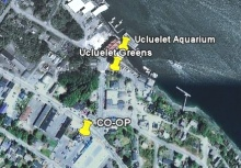 Ucluelet Village Greens - Google